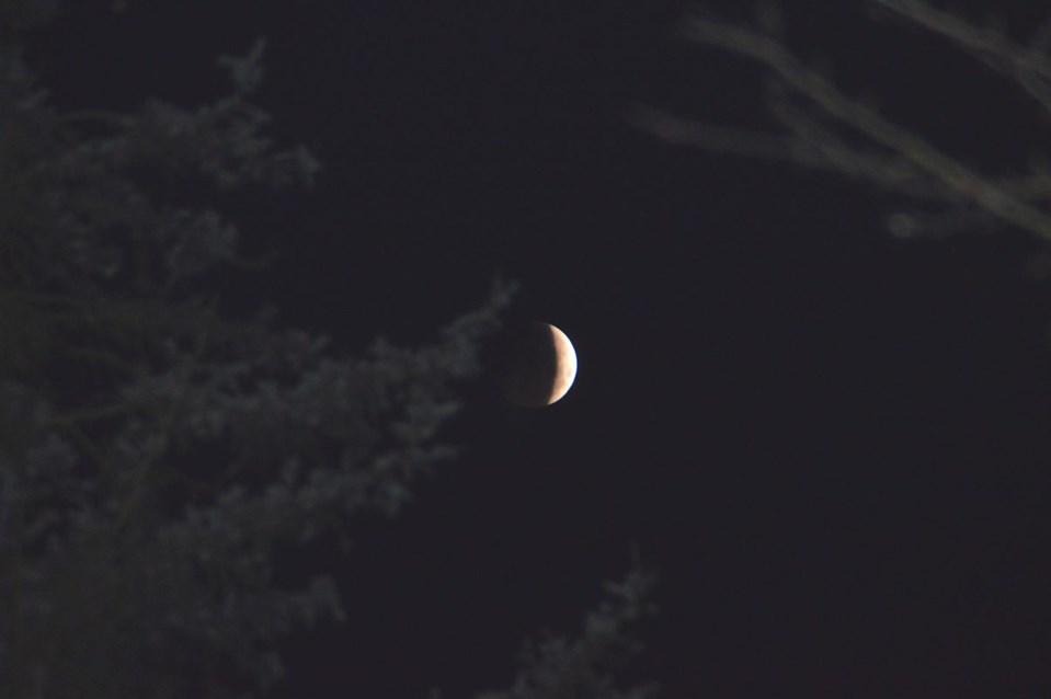 Mondfinsternis8