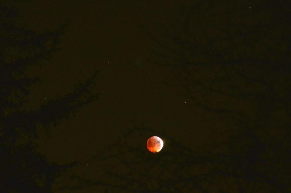 Mondfinsternis9