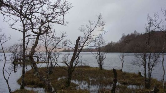 Vorfruehlingsmorgen-am-Loch-Arkaig,1563015127711,image-swr-148350 V-16x9@2dM -ad6791ade5eb8b5c935dd377130b903c4b5781d8