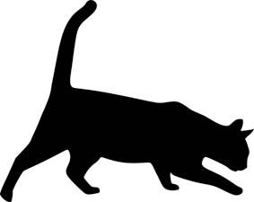 Dieses Bild hat ein leeres alt-Attribut; sein Dateiname ist cat01.jpeg.